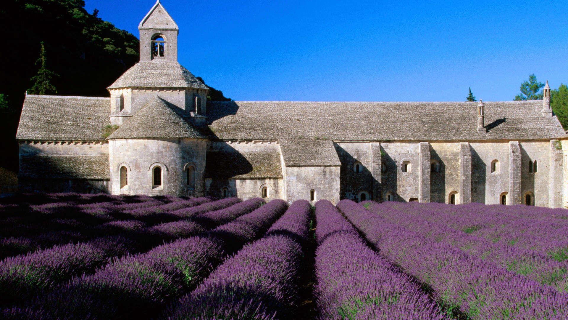 lavande et monastere